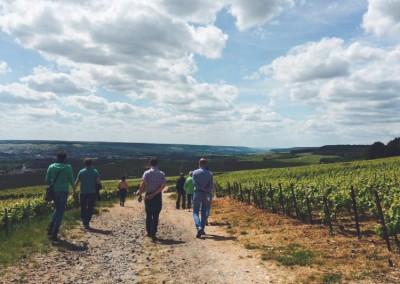 Groepsreis naar la Champagne