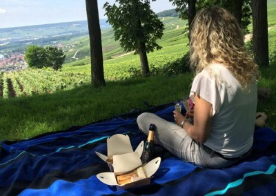 Picknick in de Champagne