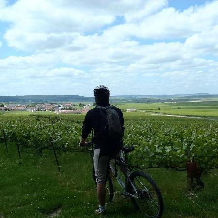 Visiting the Champagne region
