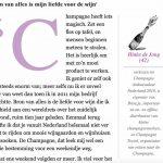 Interview Hinke in Financieel Dagblad