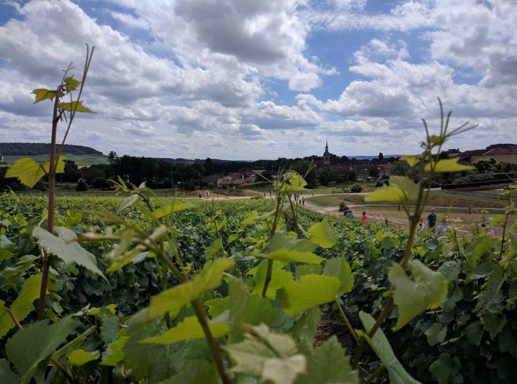 Route du Champagne 2016 | Foto: Cap'C